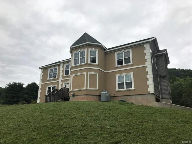 117 Rocky Hill Road, Grahamsville, NY 12740 (MLS #4839532) :: Mark Boyland Real Estate Team