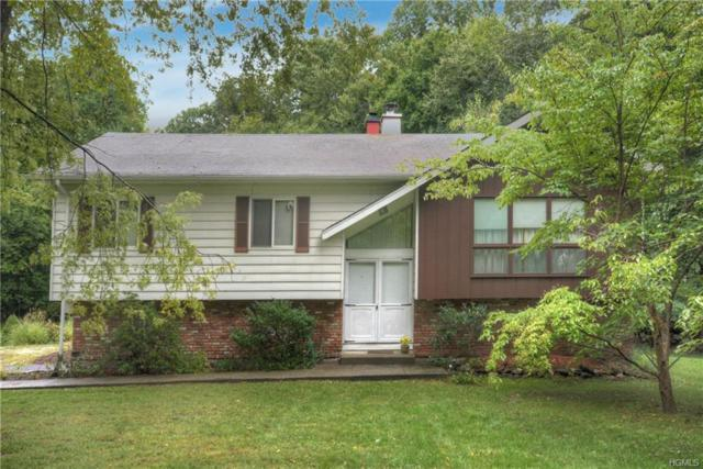 100 Dahlia Drive, Mahopac, NY 10541 (MLS #4839689) :: Stevens Realty Group