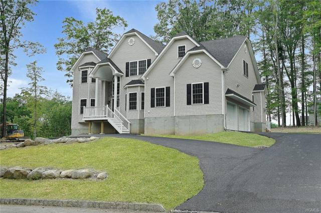 31 Swan Hollow Road, New Windsor, NY 12553 (MLS #H4839714) :: Kevin Kalyan Realty, Inc.