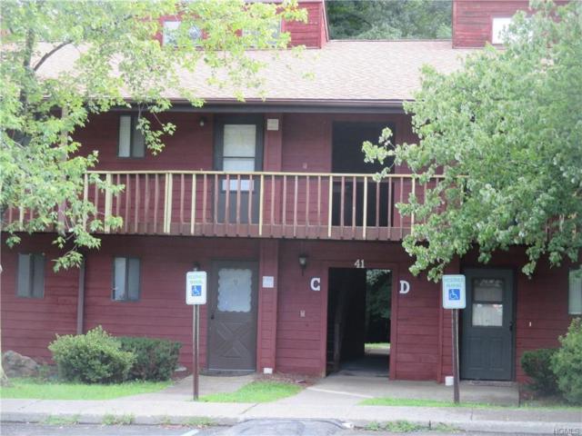 41 Berwynn Road C6, Harriman, NY 10926 (MLS #4839902) :: Mark Seiden Real Estate Team