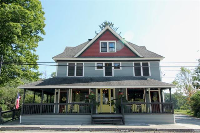 4053 State Route 52, Youngsville, NY 12791 (MLS #4839925) :: Shares of New York