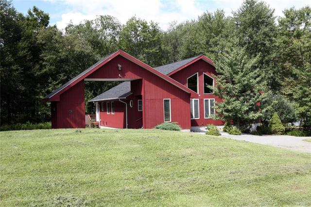 59 Meadowland Drive, Damascus, NY 18415 (MLS #4839935) :: Shares of New York