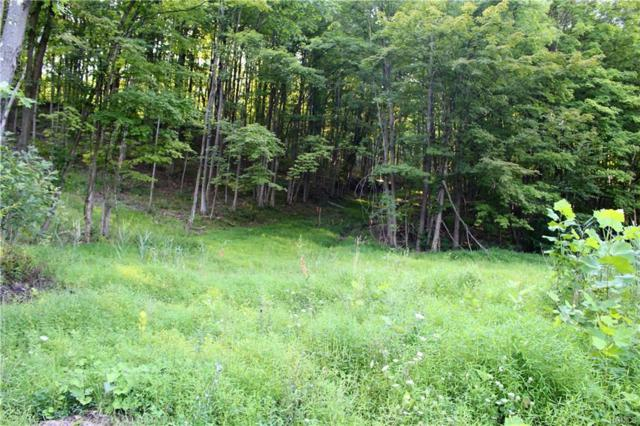 TBD Lake View Terrace, Kingston, NY 12401 (MLS #4839965) :: Shares of New York