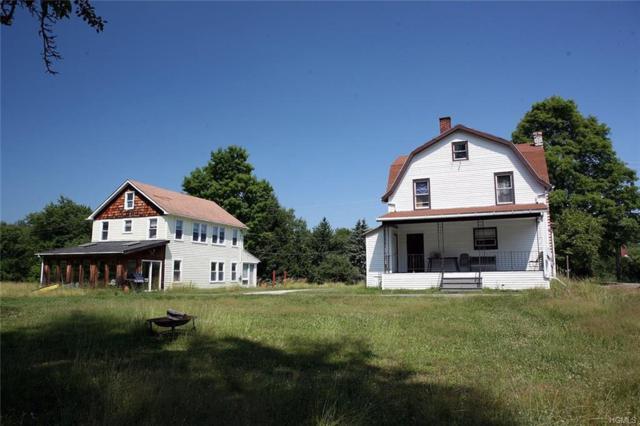 41 Schmidt Lane, Cochecton, NY 12726 (MLS #4840063) :: Mark Boyland Real Estate Team