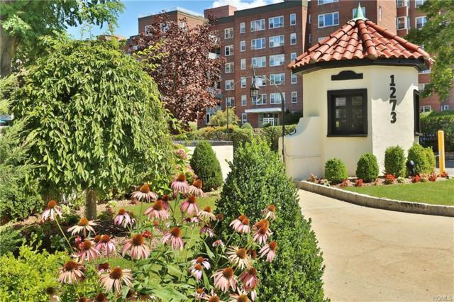 1273 North Avenue 3-5E, New Rochelle, NY 10804 (MLS #4840154) :: William Raveis Legends Realty Group