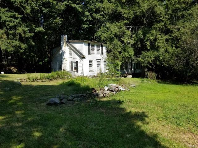 177 East Road, Wallkill, NY 12589 (MLS #4840212) :: Shares of New York
