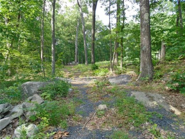 20 Decker Road, Wallkill, NY 12589 (MLS #4840254) :: Shares of New York