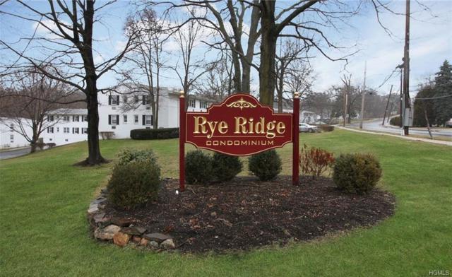 15 Avon Circle D, Rye Brook, NY 10573 (MLS #4840305) :: Mark Boyland Real Estate Team