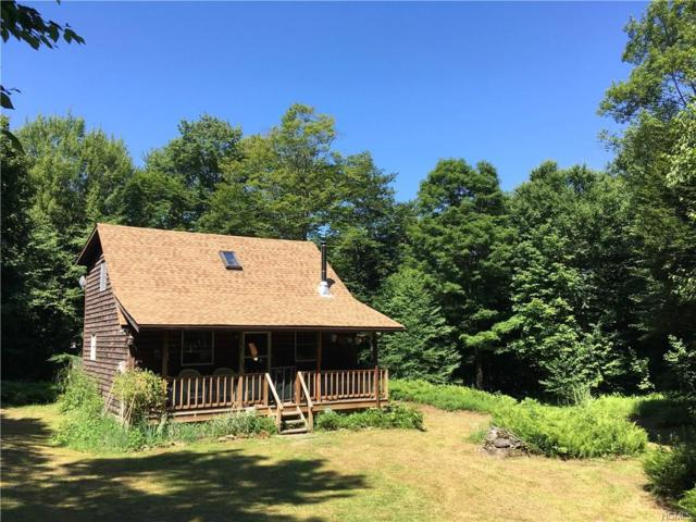 529 Petersen Drive, Roscoe, NY 12776 (MLS #4840310) :: William Raveis Legends Realty Group