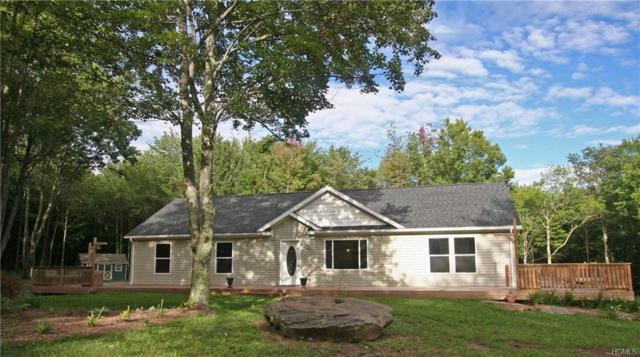 668 Skyline Drive, Andes, NY 13731 (MLS #4840388) :: Mark Boyland Real Estate Team