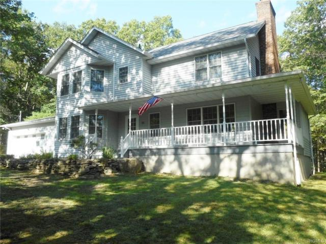 88 Kalin Weber Road, Glen Spey, NY 12737 (MLS #4840435) :: Shares of New York