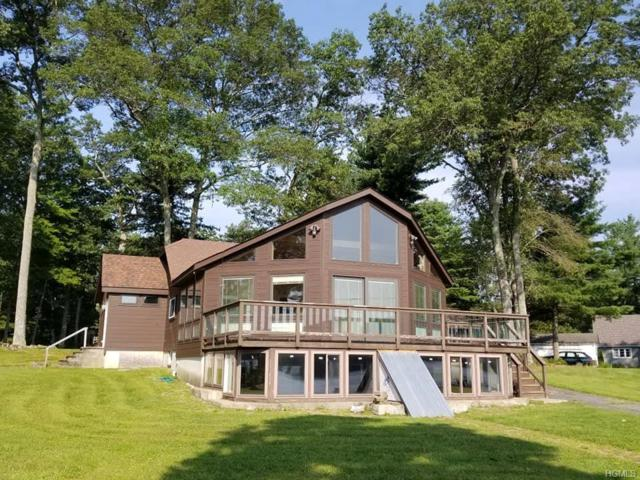 159 Mohican Trail, Glen Spey, NY 12737 (MLS #4840545) :: Shares of New York