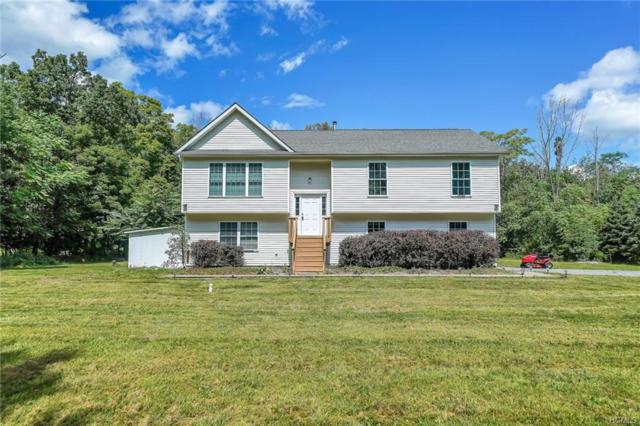 336 County Route 50, New Hampton, NY 10958 (MLS #4840564) :: William Raveis Legends Realty Group