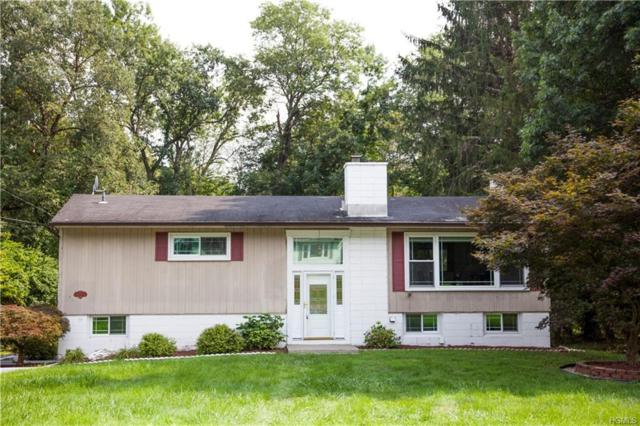 8 Robert Drive, Hyde Park, NY 12538 (MLS #4840617) :: Shares of New York