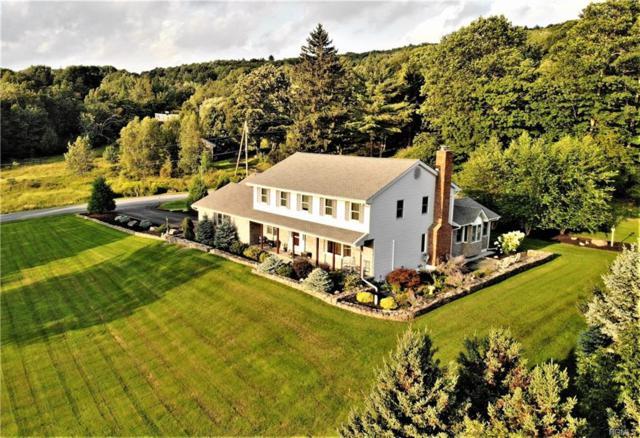 14 Sheeley Road, Grahamsville, NY 12740 (MLS #4840822) :: Mark Boyland Real Estate Team