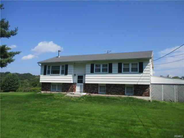 2032 Mt Hope Road, Middletown, NY 10940 (MLS #4840865) :: Shares of New York