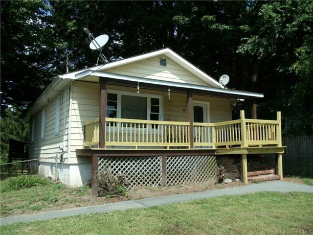 53 County Road 114, Cochecton, NY 12726 (MLS #4840905) :: Mark Boyland Real Estate Team