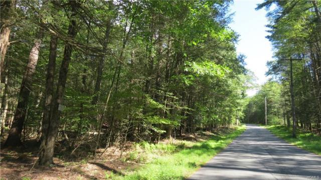 Lot #3 Skipperene Road, Narrowsburg, NY 12764 (MLS #4840921) :: Mark Boyland Real Estate Team