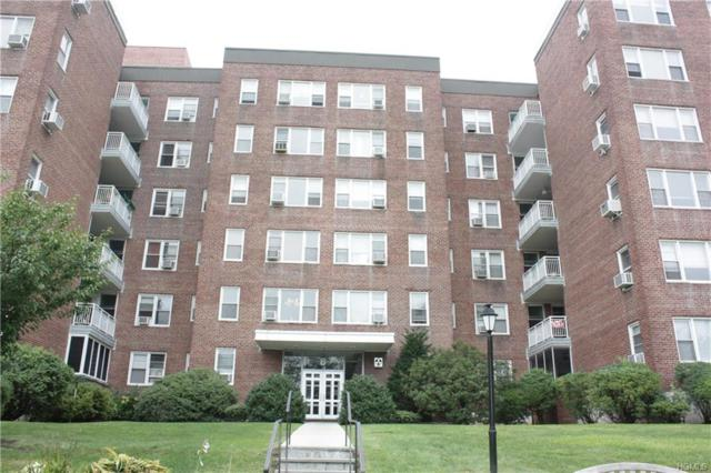 1255 North Avenue 4N, New Rochelle, NY 10804 (MLS #4841127) :: Mark Boyland Real Estate Team