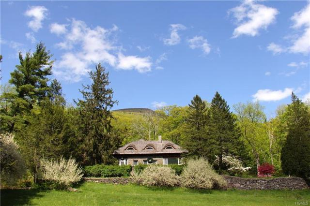 575 Plank Road, Shandaken, NY 12464 (MLS #4841237) :: Mark Seiden Real Estate Team