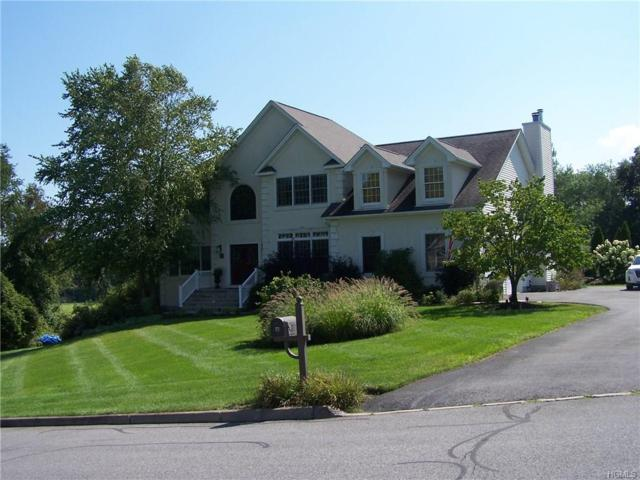 105 Denniston Drive, New Windsor, NY 12553 (MLS #4841273) :: Shares of New York