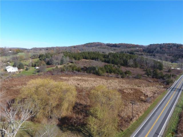 Lot 1 Westerly Ridge Drive, Amenia, NY 12501 (MLS #4841295) :: Mark Boyland Real Estate Team