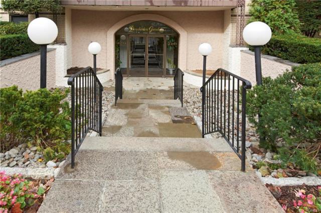 2261 Palmer Avenue 4O, New Rochelle, NY 10801 (MLS #4841363) :: Mark Boyland Real Estate Team