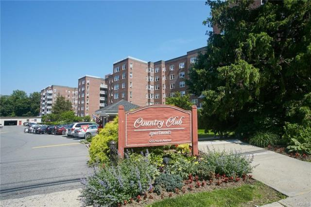 1255 North Avenue C-5Z, New Rochelle, NY 10804 (MLS #4841391) :: Mark Seiden Real Estate Team