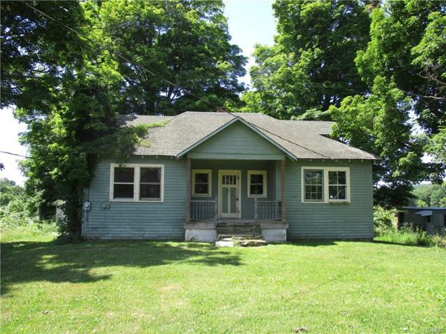 97 Bogerts Lane, Lake Katrine, NY 12449 (MLS #4841424) :: Mark Boyland Real Estate Team