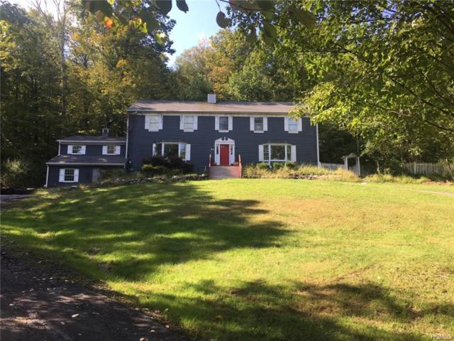 24 Fields Lane, Chester, NY 10918 (MLS #4841440) :: William Raveis Legends Realty Group