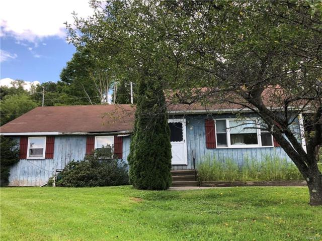 79 Lime Kiln Road, Dover Plains, NY 12522 (MLS #4841460) :: Shares of New York