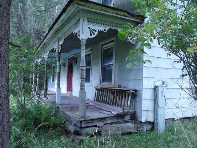 47 Hemmer Road, Jeffersonville, NY 12748 (MLS #4841468) :: Stevens Realty Group