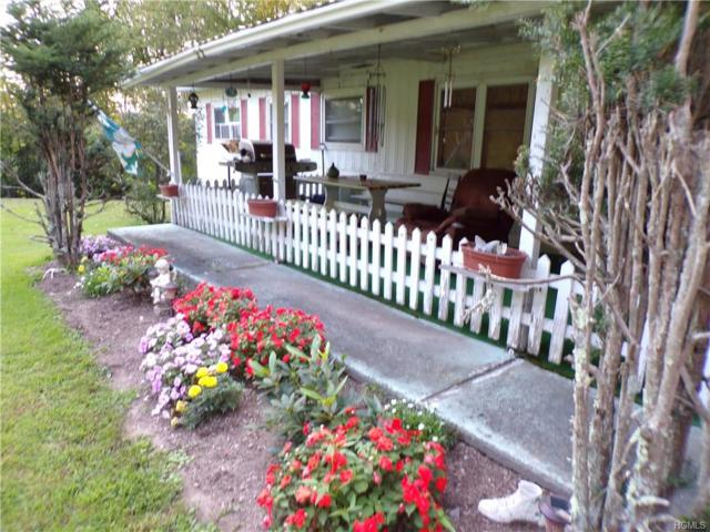 15 Wahl Road, Jeffersonville, NY 12748 (MLS #4841508) :: Stevens Realty Group