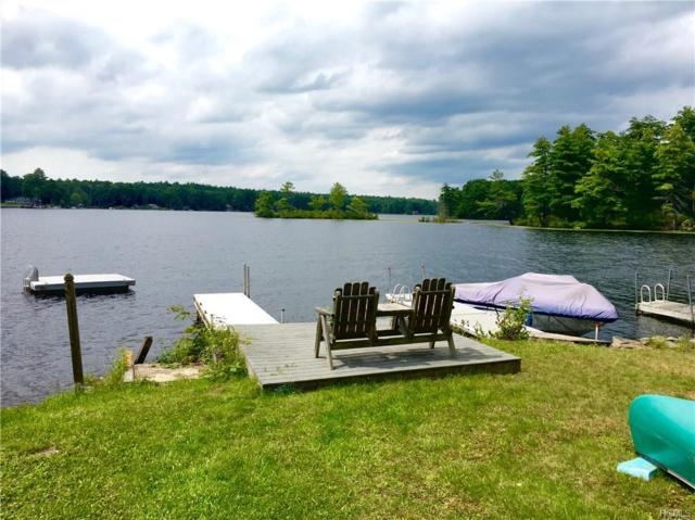 10 Beach Road, Glen Spey, NY 12737 (MLS #4841601) :: Shares of New York