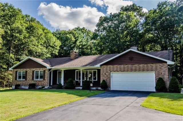 12 Leavenworth Road, Eldred, NY 12732 (MLS #4841622) :: Stevens Realty Group