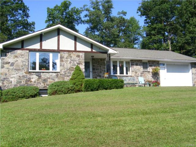99 Mail Road, Barryville, NY 12719 (MLS #4841749) :: Stevens Realty Group
