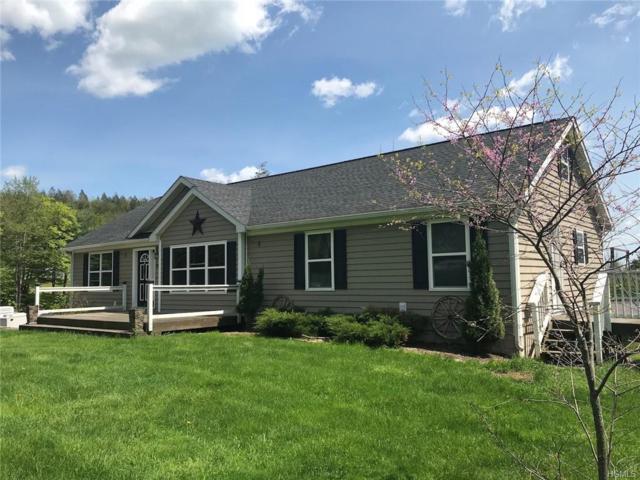 76 Cummings Road, Claryville, NY 12725 (MLS #4841760) :: Mark Seiden Real Estate Team