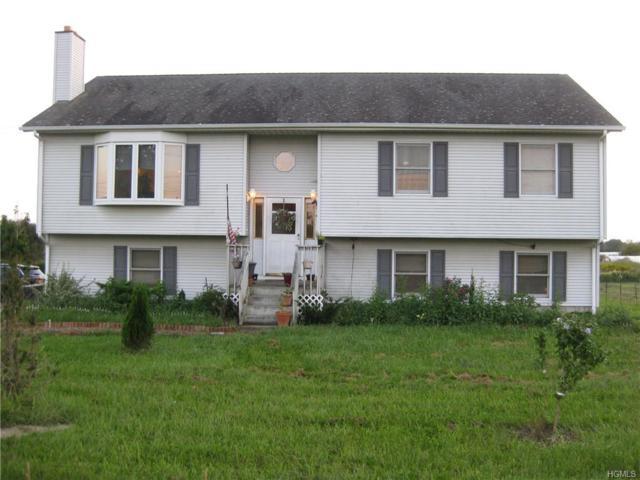 311 Maple Avenue, New Hampton, NY 10958 (MLS #4841881) :: Stevens Realty Group