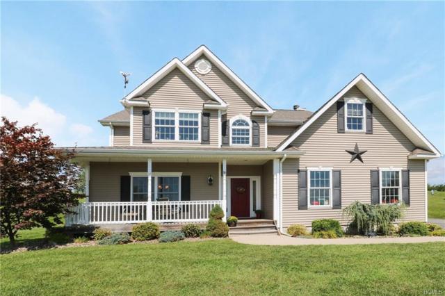 16 Christina Way, Milton, NY 12547 (MLS #4841953) :: Mark Boyland Real Estate Team