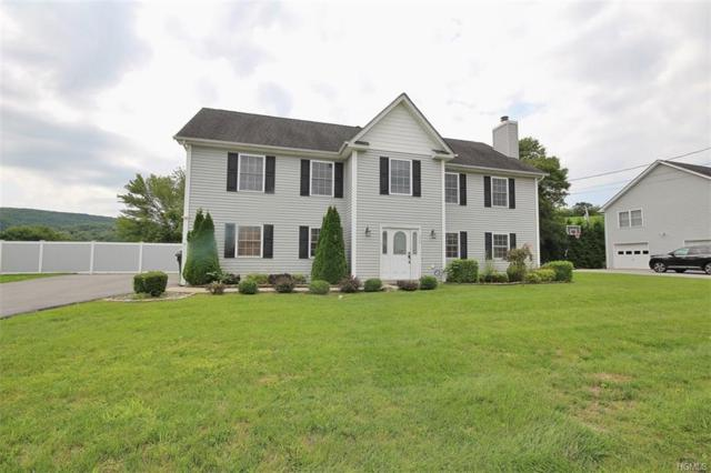 7 Marion Street, Chester, NY 10918 (MLS #4842023) :: Shares of New York