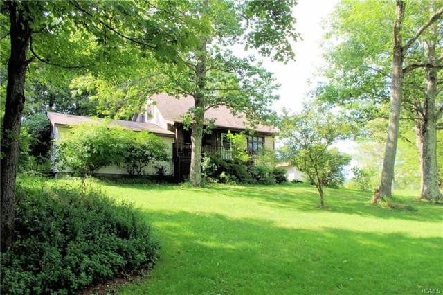 155 Graby Road, Callicoon, NY 12723 (MLS #4842097) :: Shares of New York