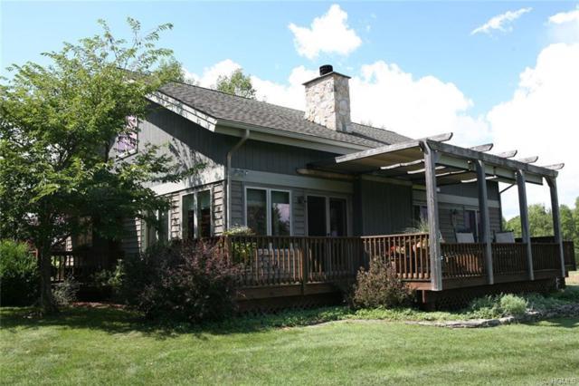 437 New Turnpike Road, Cochecton, NY 12726 (MLS #4842205) :: Mark Boyland Real Estate Team