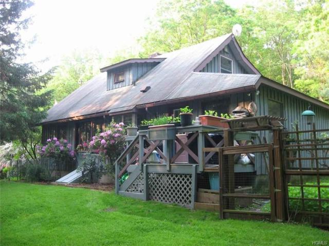 6 Leavenworth Road, Eldred, NY 12732 (MLS #4842208) :: Stevens Realty Group