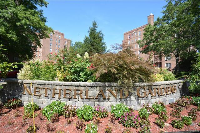 5615 Netherland Avenue 2F, Bronx, NY 10471 (MLS #4842233) :: William Raveis Legends Realty Group