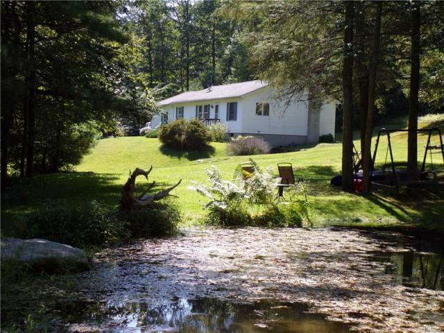 241 County Route 31, Glen Spey, NY 12737 (MLS #4842329) :: Shares of New York