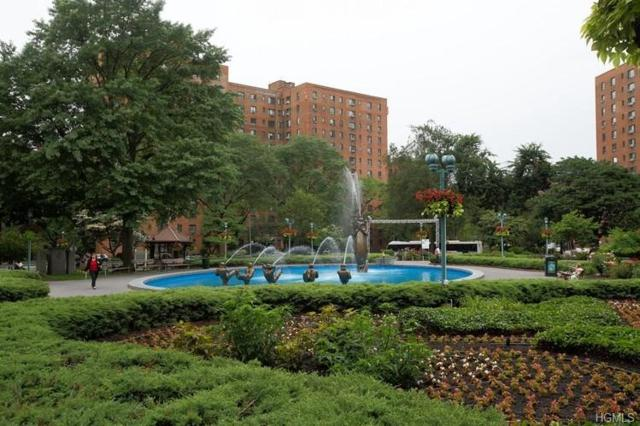 1594 Unionport Road 1D, Bronx, NY 10462 (MLS #4842363) :: Mark Boyland Real Estate Team