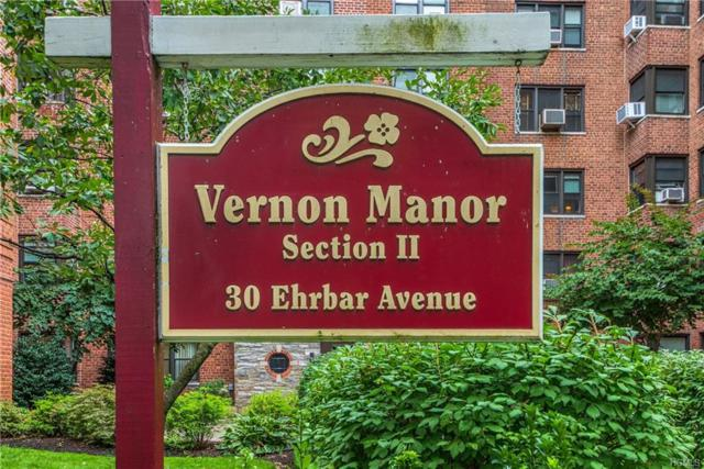 30 Ehrbar Avenue #116, Mount Vernon, NY 10552 (MLS #4842386) :: Mark Boyland Real Estate Team