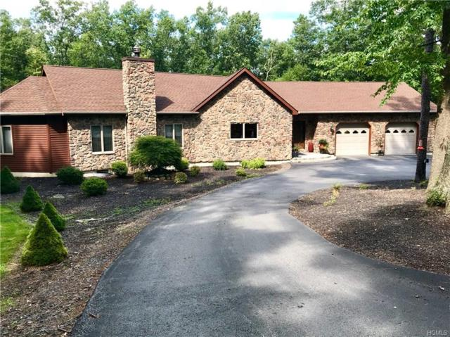 308 Walker Valley Road, Pine Bush, NY 12566 (MLS #4842389) :: Stevens Realty Group