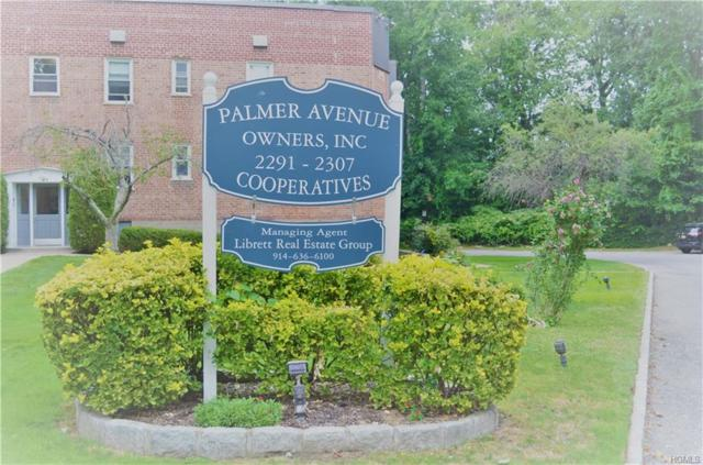 2295 Palmer Avenue 1N, New Rochelle, NY 10801 (MLS #4842524) :: William Raveis Legends Realty Group