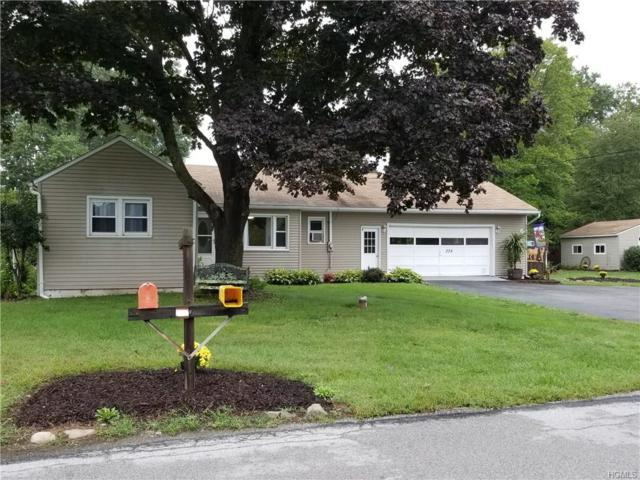 339 Browns Road, Walden, NY 12586 (MLS #4842731) :: Mark Boyland Real Estate Team